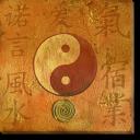Tablou Canvas Yin si Yang