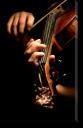 Tablou Canvas Violonistul