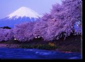 Tablou Canvas Muntele Fuji