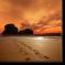 grafica/produse/8219/1_micro_tablou-canvas-urme-in-nisip.jpg