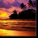 Tablou Canvas Apus Tropical
