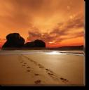 Tablou Canvas Urme in Nisip
